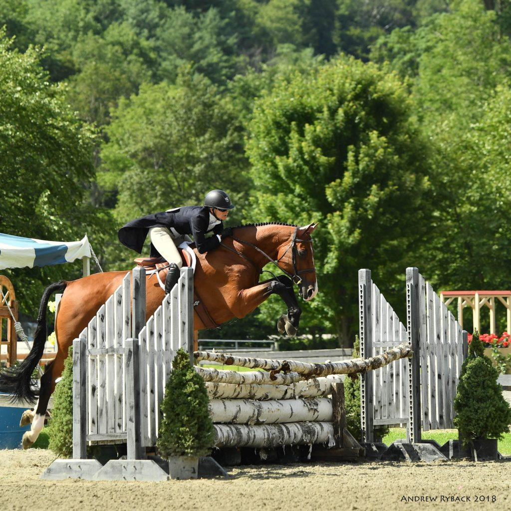 Tia Maria in Hunter Derby Vermont 2019- Nancy Benson Show Jumping